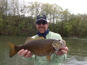 Angler with big smallmouth on the Shenandoah river, Virginia. Mid April can be a great time to target large smallmouth bass on the Shenandoah and James River.