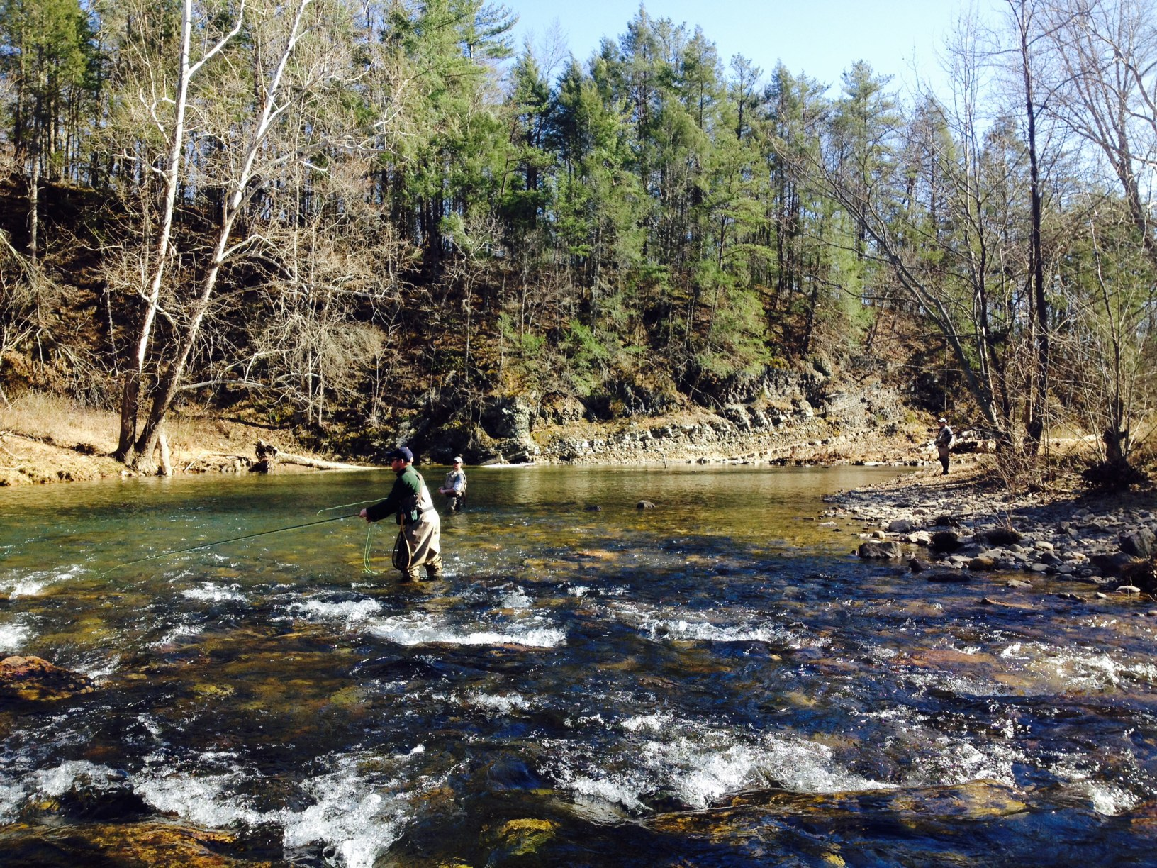 Guided fly fishing in virginia albemarle angler for Fly fishing virginia