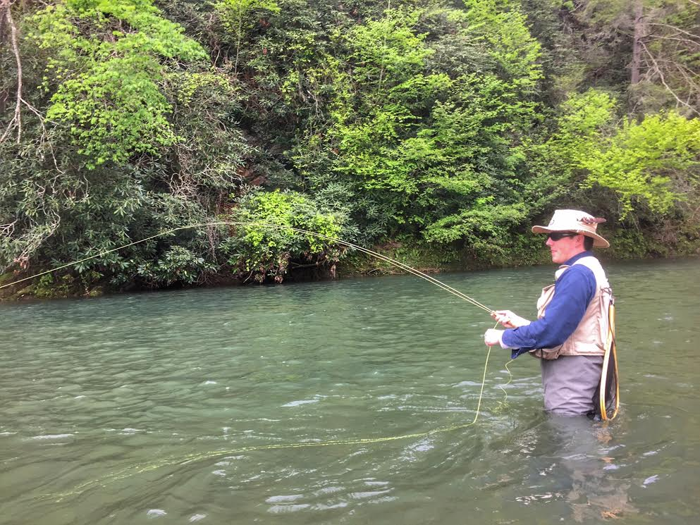 Fishing report updates central virginia 5 11 2017 for Fishing report va