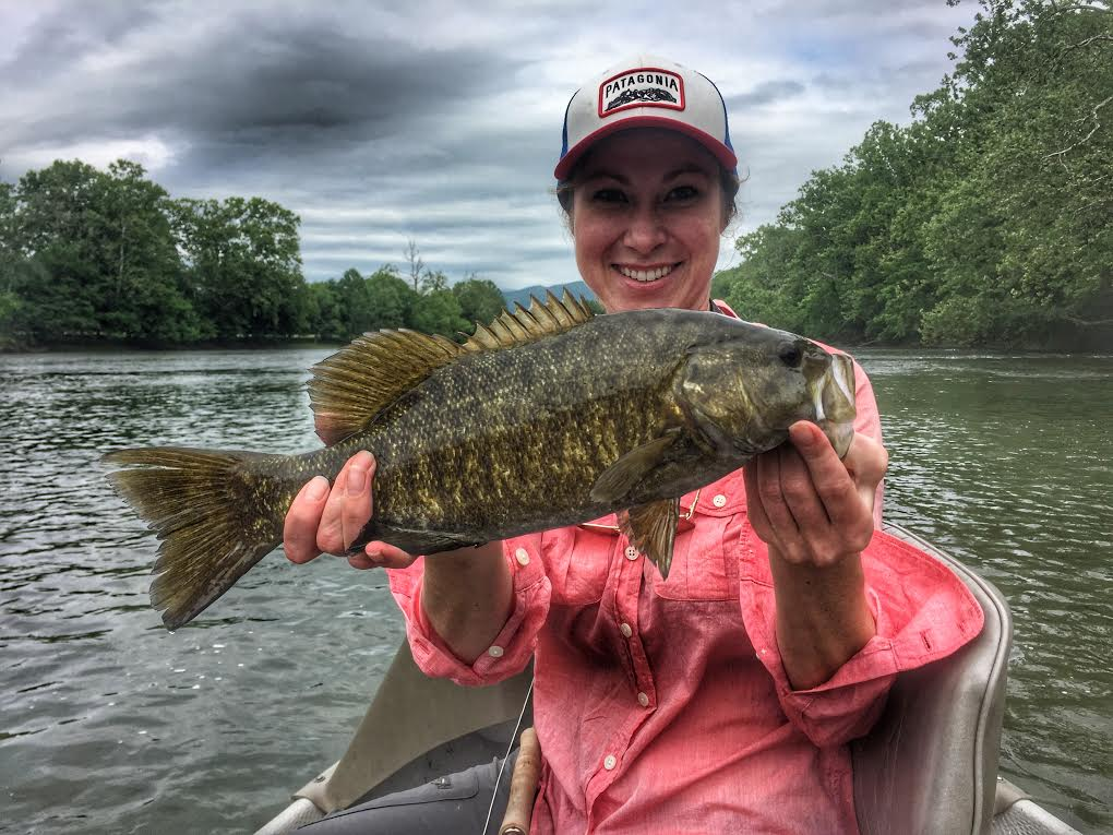Smallmouth bass on the Shenandoah river