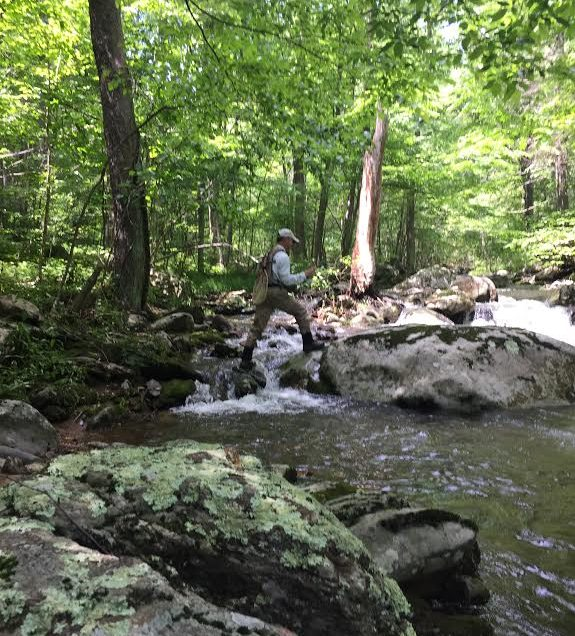 central virginia fishing report.