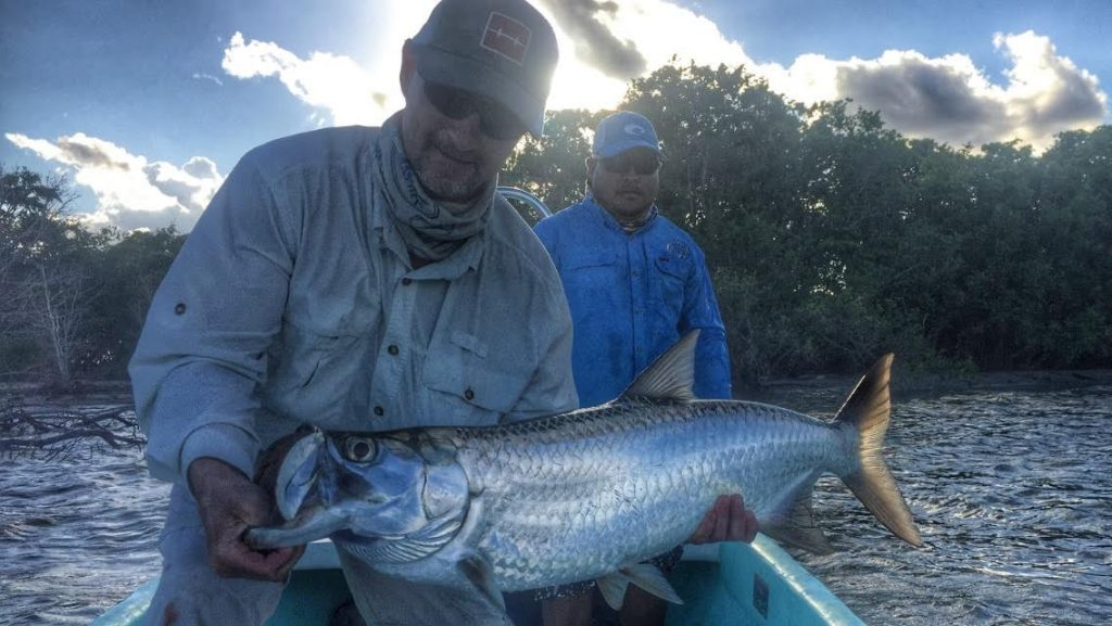 Tarpon at belize river lodge