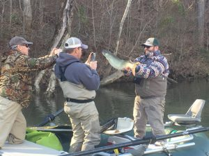 Anglers taking a picture of a musky caught on the James River.Photo posted in photo gallery.