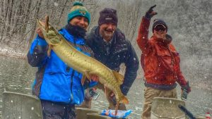 Anglers and guide with a musky on a snowy day on the James. Photo posted in photo gallery.