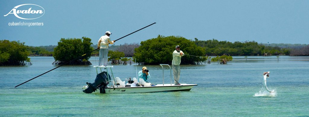 Angler in boat with a jumping tarpon while fishing Isla De Juventud cuba