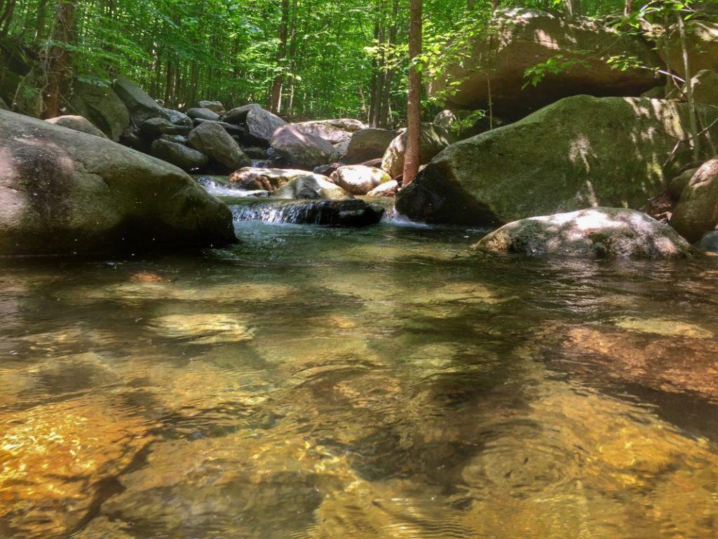Beautiful Blueridge Mountain, Shenandoah brook trout stream.