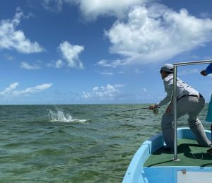Fighting a tarpon in ascension bay Mexico while fishing with Kay Fly Fishing Lodge