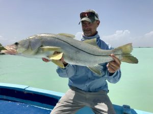 A very nice snook caught while fishing in Ascension Bay Mexico.