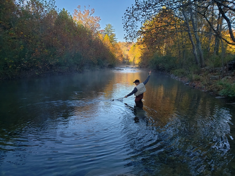 An angler landing a fish on Escatawba Farm.