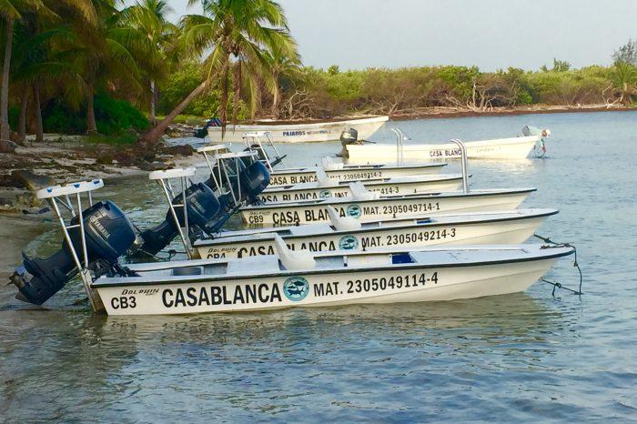 Casa Blanca, Ascension Bay Mexico.